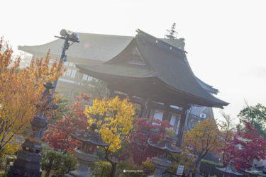 【ノベル風旅行記】秋の北信州④善光寺と心の姿勢