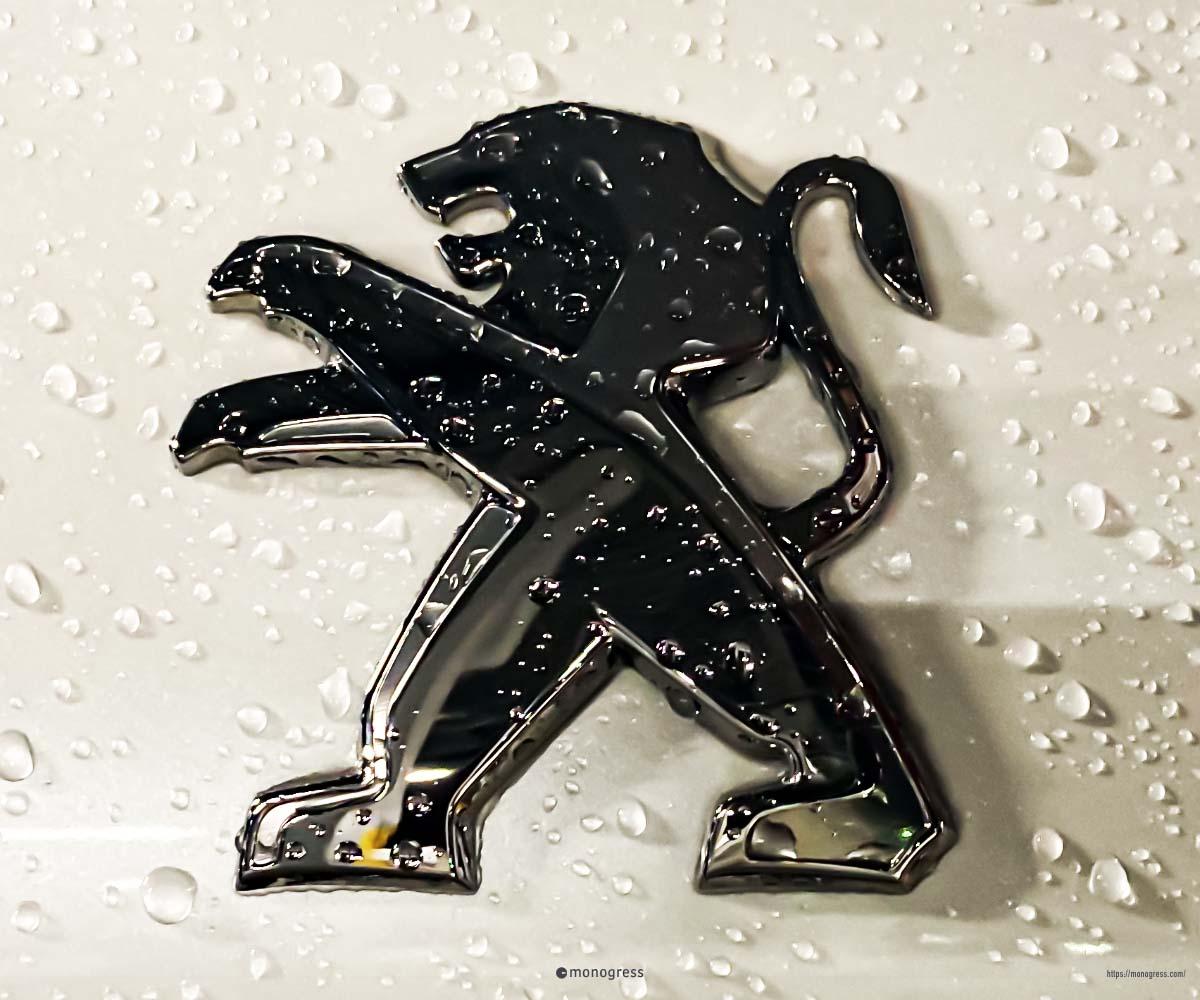 雨のライオンエンブレム