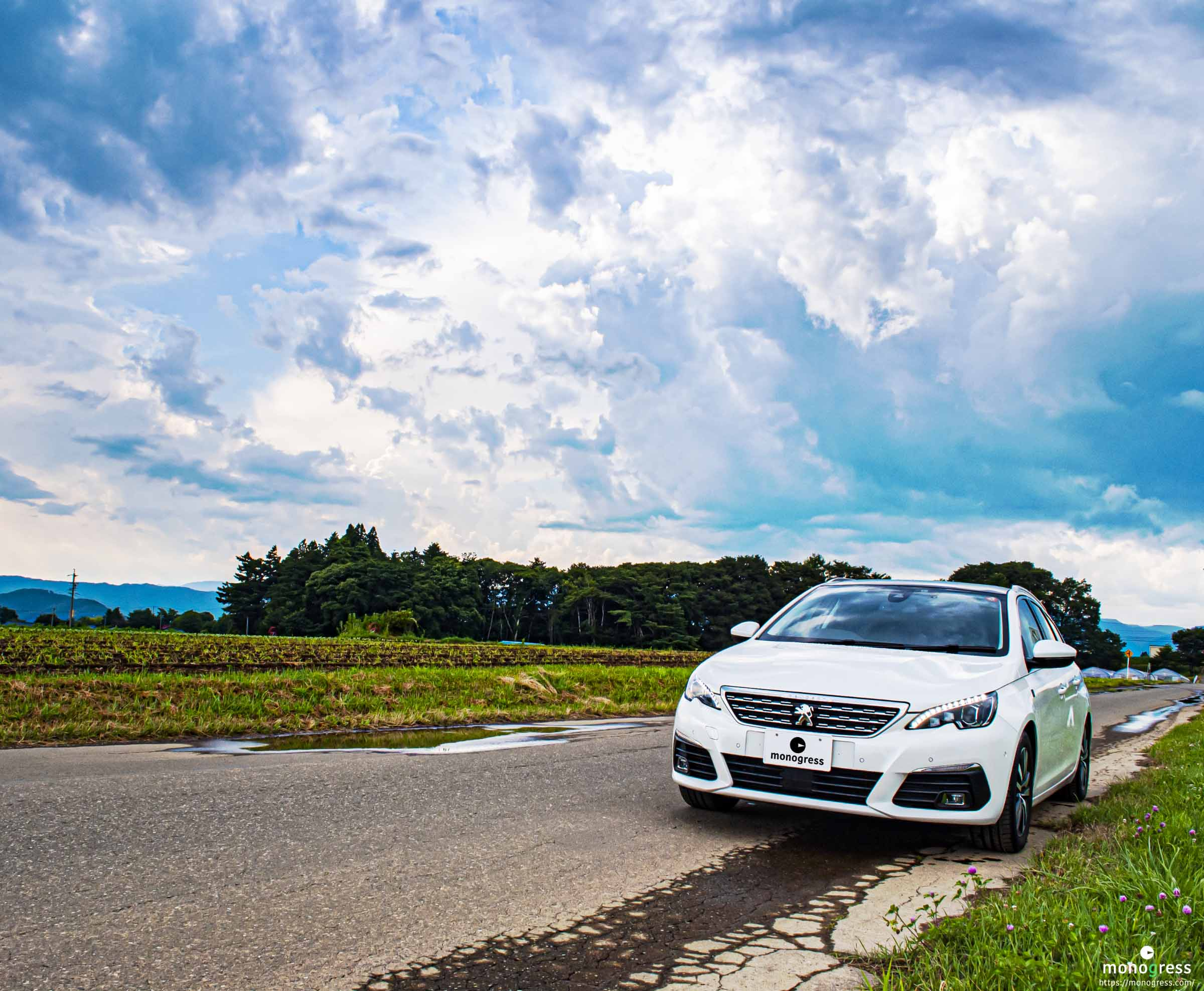 Peugeot 308 と田園風景