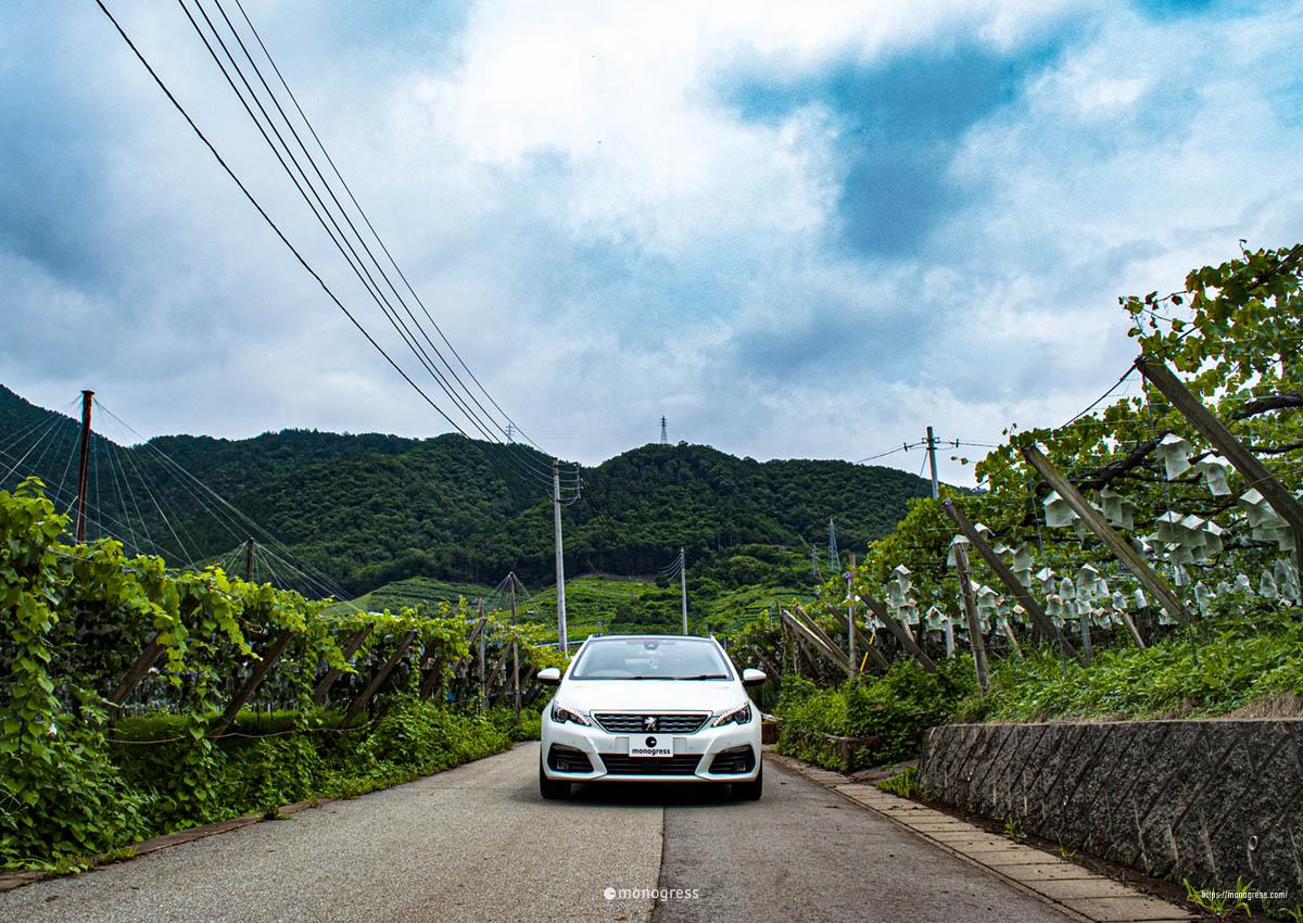 Peugeot308SW in 山梨勝沼