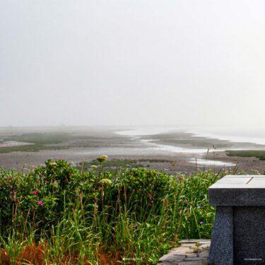 迷い道に魅せられて/トドワラ・ナラワラで心を洗う 北海道野付半島